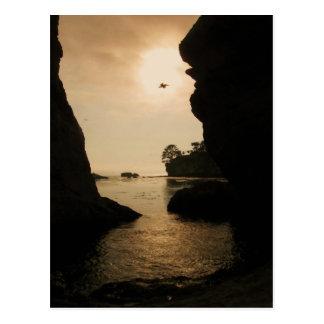 Shell Beach II Postcard