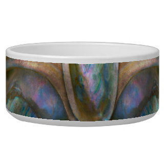 Shell - Conchology - Devine Pearlescence Bowl