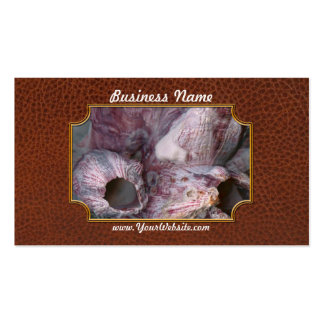 Shell - Conchology - Volcano Island Business Card