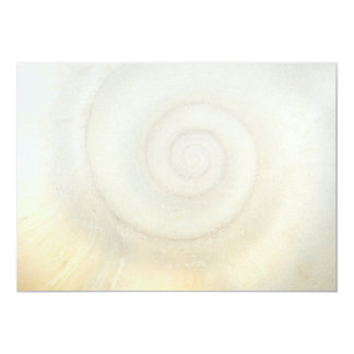 Shell - Conchology - White Spiral Card