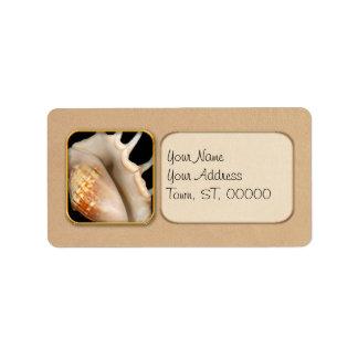Shell - conquiliología - concha etiqueta de dirección