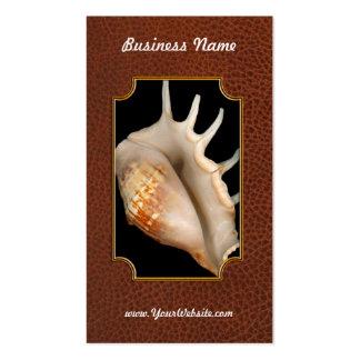 Shell - conquiliología - concha tarjetas de visita