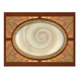 Shell - conquiliología - espiral blanco postales