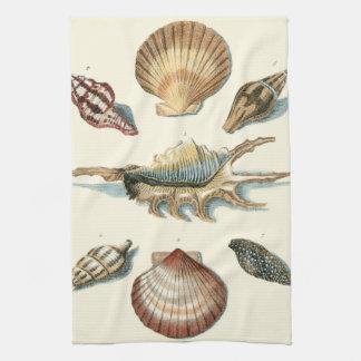 Shell de lujo vara toallas