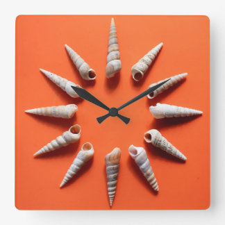 Shell Dial Wall Clock (photography)