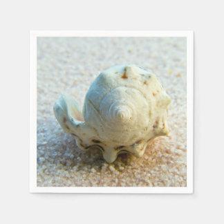 Shell elegante en la arena servilleta desechable