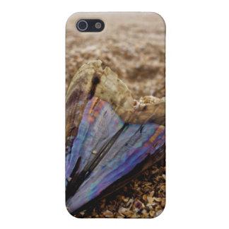 Shell en forma de corazón iPhone 5 cárcasas