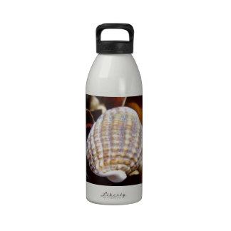 Shell en una cama de la alga marina botella de beber