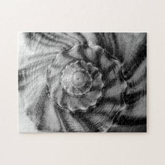 Shell espiral, blanco y negro, rompecabezas con fotos