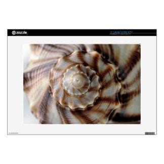 Shell espiral calcomanía para portátil