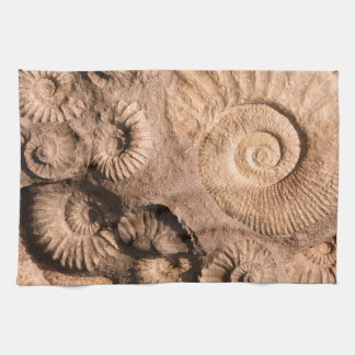 Shell Fossils Hand Towel