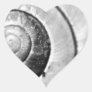 Shell Heart Sticker
