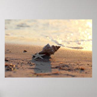 Shell Impressionen at the sea Print