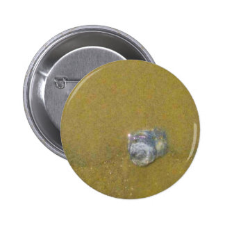 Shell in the Sand 2 Inch Round Button