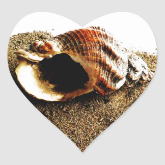 Shell in the Sand Heart Sticker