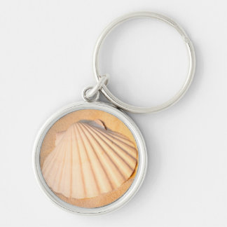 Shell Laying In Sand Keychain