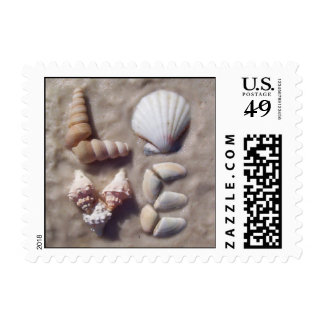 Shell Love Postage