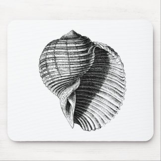 Shell Mouse Pad