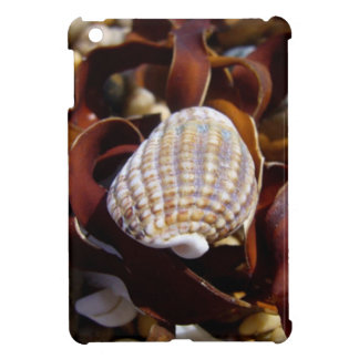 Shell On A Bed Of Seaweed iPad Mini Cases