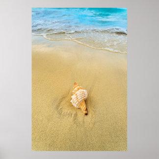 Shell On Beach | Jamaica Poster