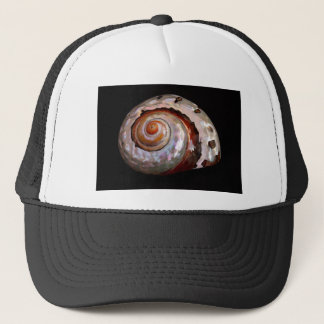 Shell on black trucker hat