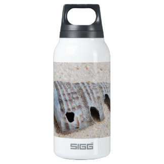 Shell on white sandy beach thermos bottle