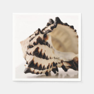 Shell Paper Napkins
