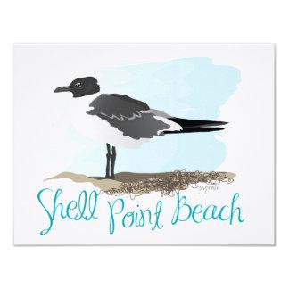 Shell Point Beach Gull Announcements