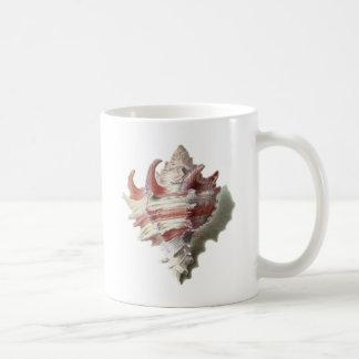 Shell rosado taza básica blanca