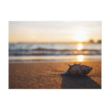 Beach Themed Shell   Sun   Sea   Ocean Canvas Print