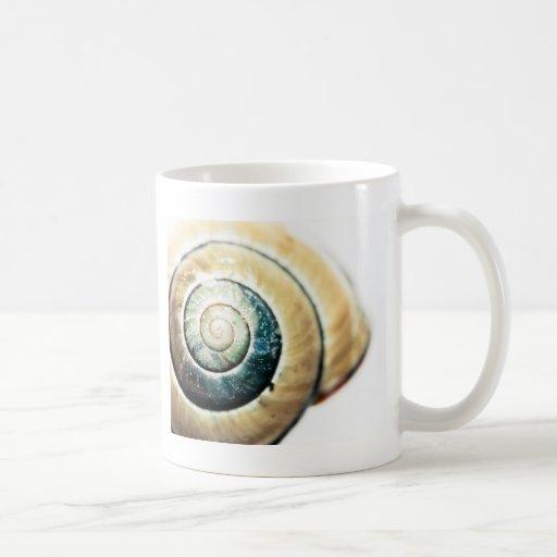 Shell Taza De Café