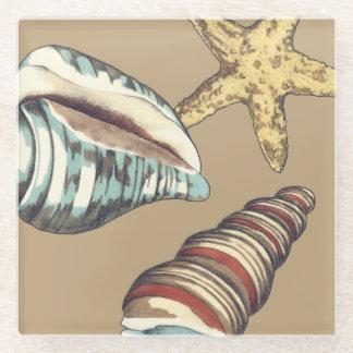 Shell Trio on Khaki Glass Coaster