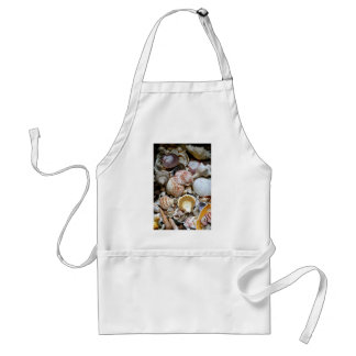 Shell Variety Adult Apron