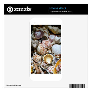 Shell Variety iPhone 4S Skin