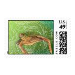 Shelley II Postage Stamp