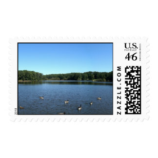 Shelley Lake in Raleigh NC Postage Stamp