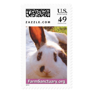 Shelley the Rabbit Postage Stamp