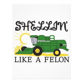Shellin Like a Felon Letterhead
