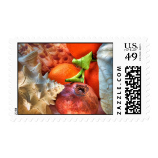 Shells and Fruits still-life Postage