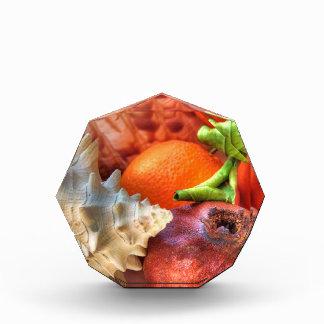 Shells and Fruits still-life table ornament Award