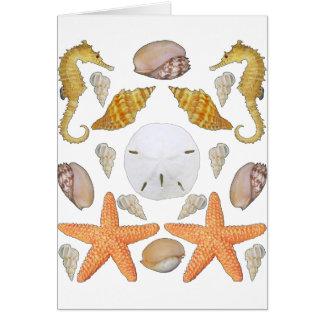 Shells Galore Card