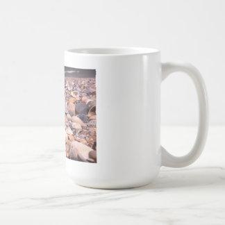 Shells galore classic white coffee mug