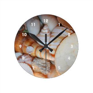 shells image from florida many seashells round wall clocks