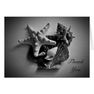 Shells in black and white Thank You card