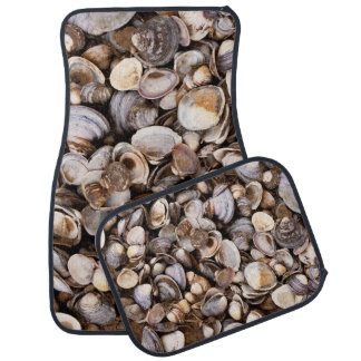 Shells in Mud Car Mat