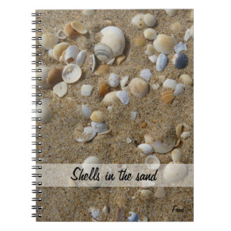 shells in the sand spiral notebooks
