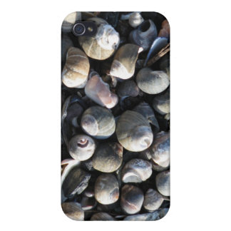 Shells Case For iPhone 4