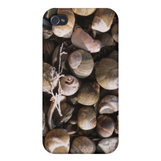 Shells iPhone 4/4S Covers