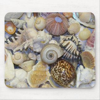 shells mouse pad