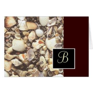 Shells Note Card